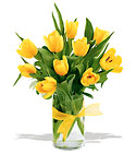 Sunny Yellow Tulips from Sharon Elizabeth's Floral Designs in Berlin, CT
